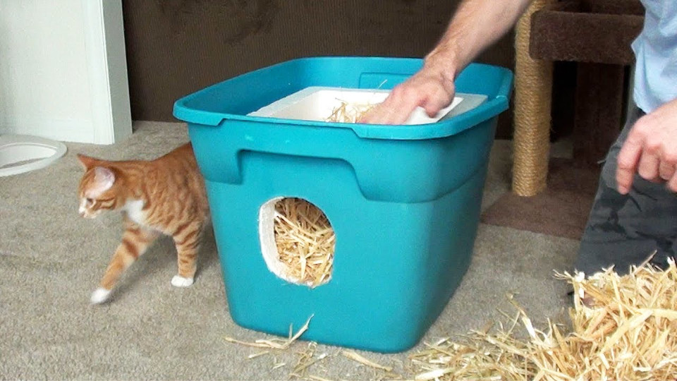 How to Make a Shelter For Stray And Feral Cats