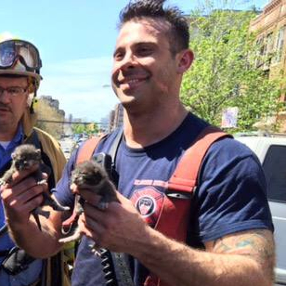 Firefighter Rescued 4 Tiny Kittens From Fire!