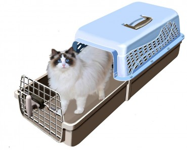 If You Own A Cat You Will Want One Of These!