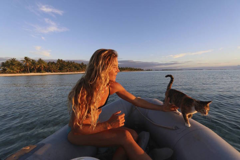 A Woman And Her Cat Are Sailing Around The World Land