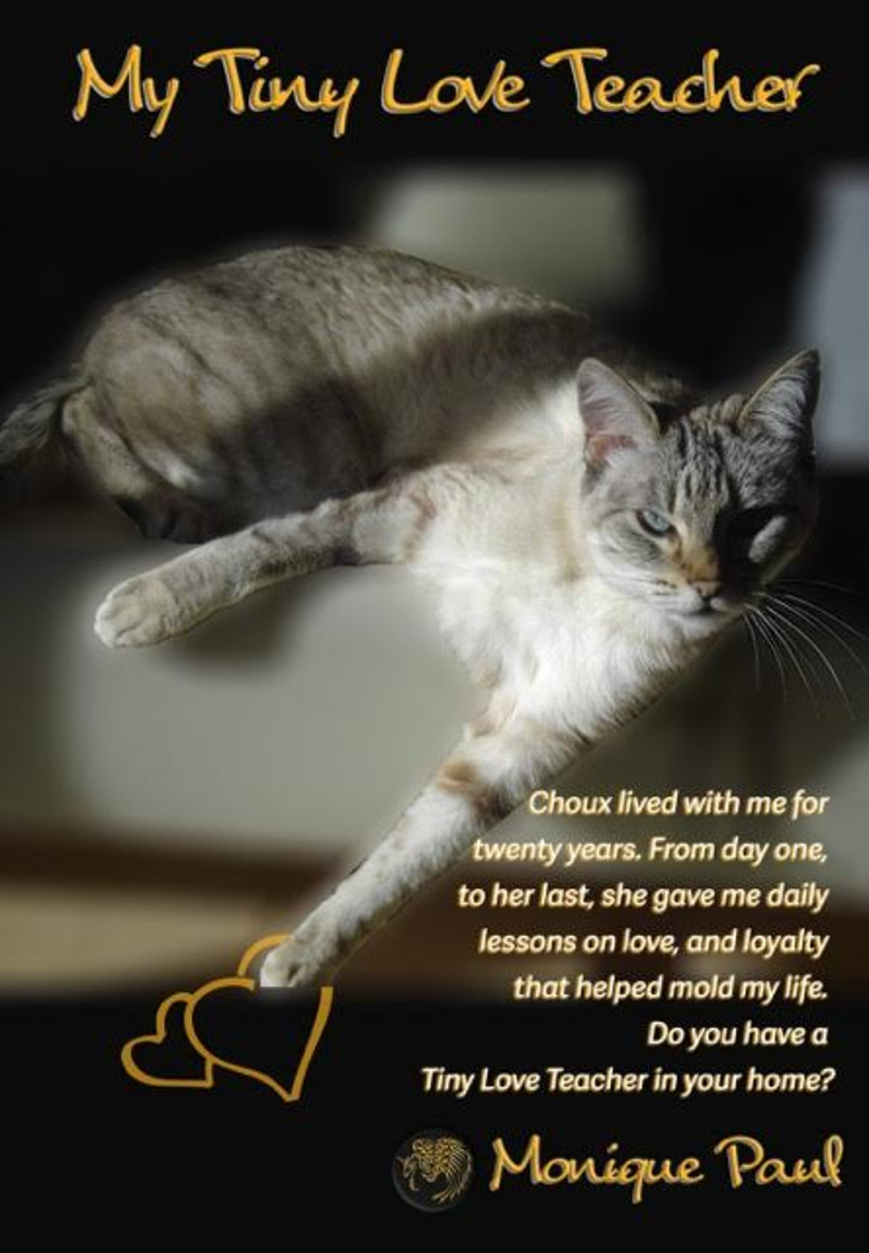 'My Tiny Love Teacher', Lessons From A Cat!