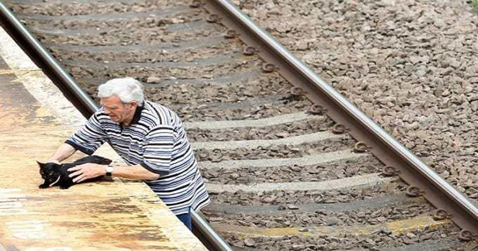 Pensioner Rescues Injured Cat From Railway Line!