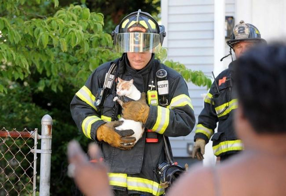 Woman Rescued Three Kittens From Fire. But Cat Mother Needed Also To Be Rescued