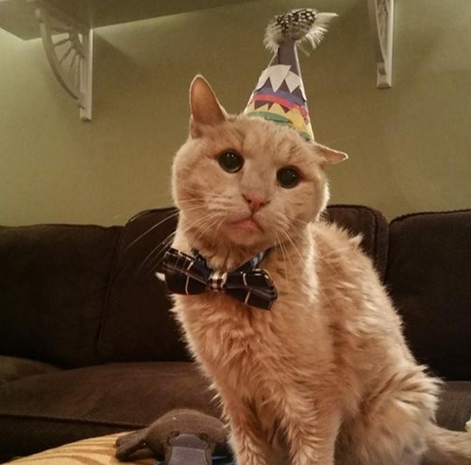 On November 19th, Tigger Turned 22!