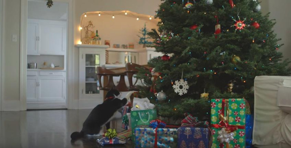 who invented christmas was it a cat - When Was Christmas Invented
