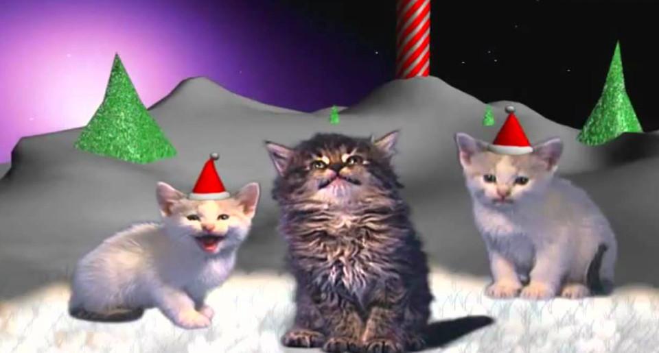 Jingle Cats Silent Night!