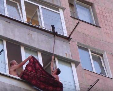Men Rescue Kitten Hanging on Clothesline!
