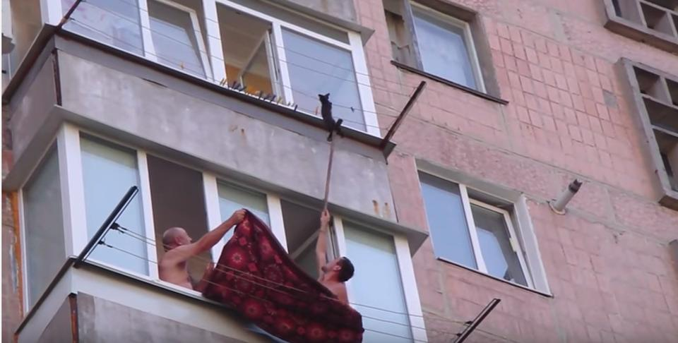 Men Rescue Kitten Hanging on Clothesline!