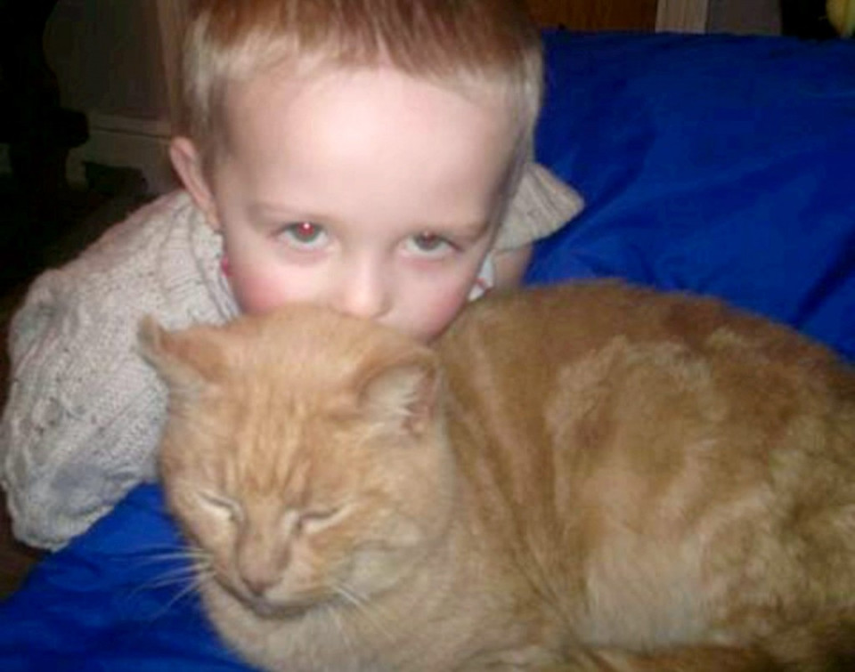 Boy finds lost cat