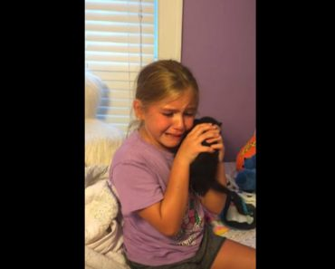 Adorable Girl Is Given A Kitten And She Cries Tears Of Pure Joy!