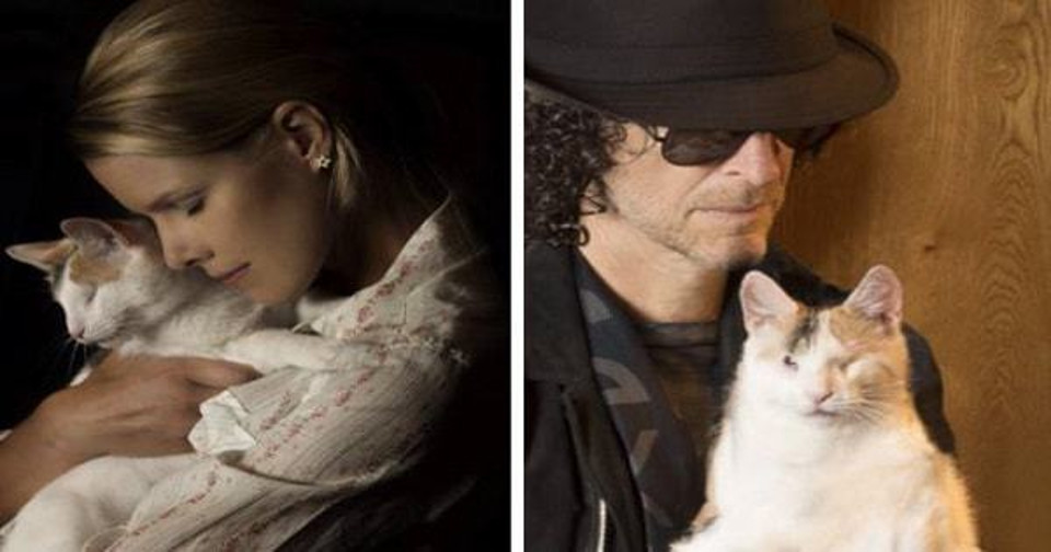 Howard Stern and Wife Beth's Home is Full of Cats