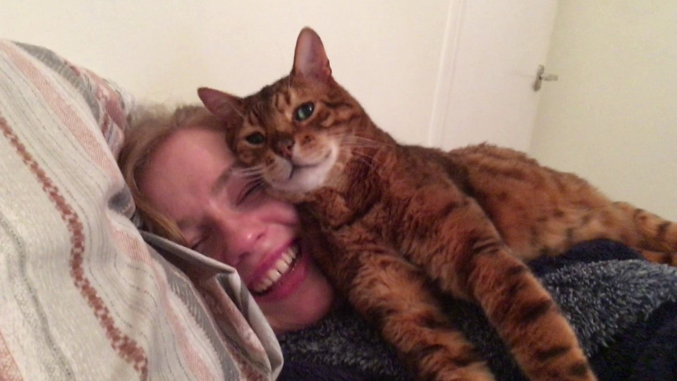 Cat Approves His Human's New Girlfriend