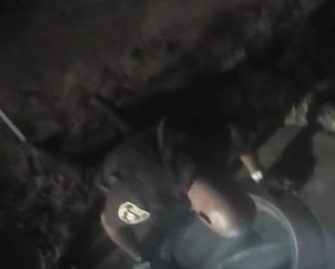 Bodycam Captures Officer Rescuing Small Kitten From Storm Drain!
