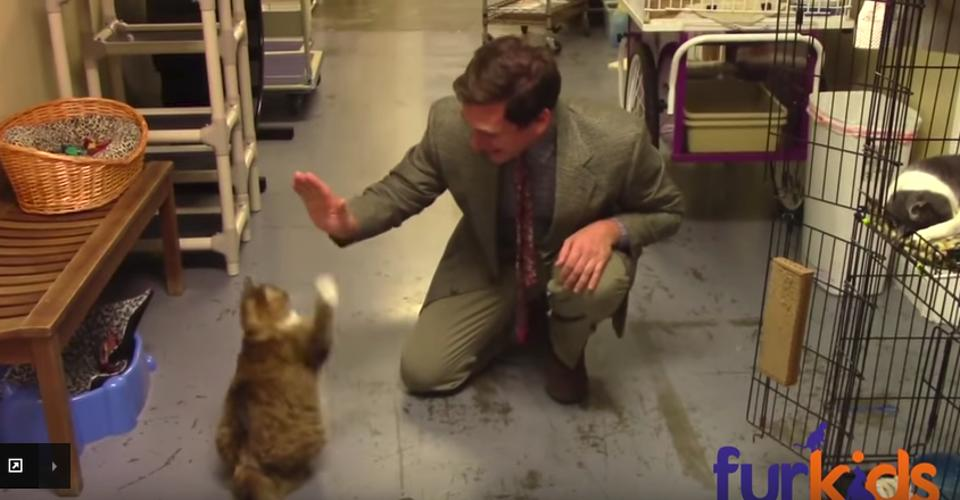 Hilarious Low-Budget Animal Shelter Commercial  Goes Viral!