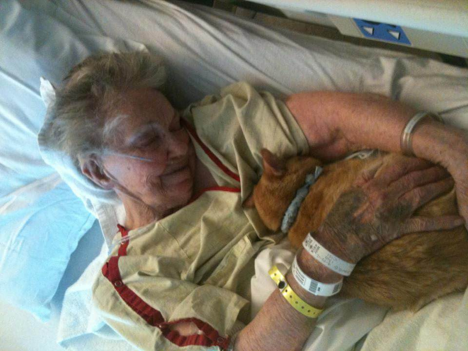 Elderly Woman's Dying Wish Is To See Her Best Friend One Last Time To Say Goodbye