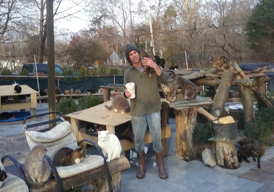 Man Rescues Over 300 Homeless Cats After Losing His Son…