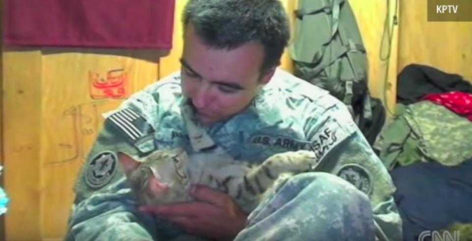 Soldier Reunites With Cat He Rescued In Afghanistan