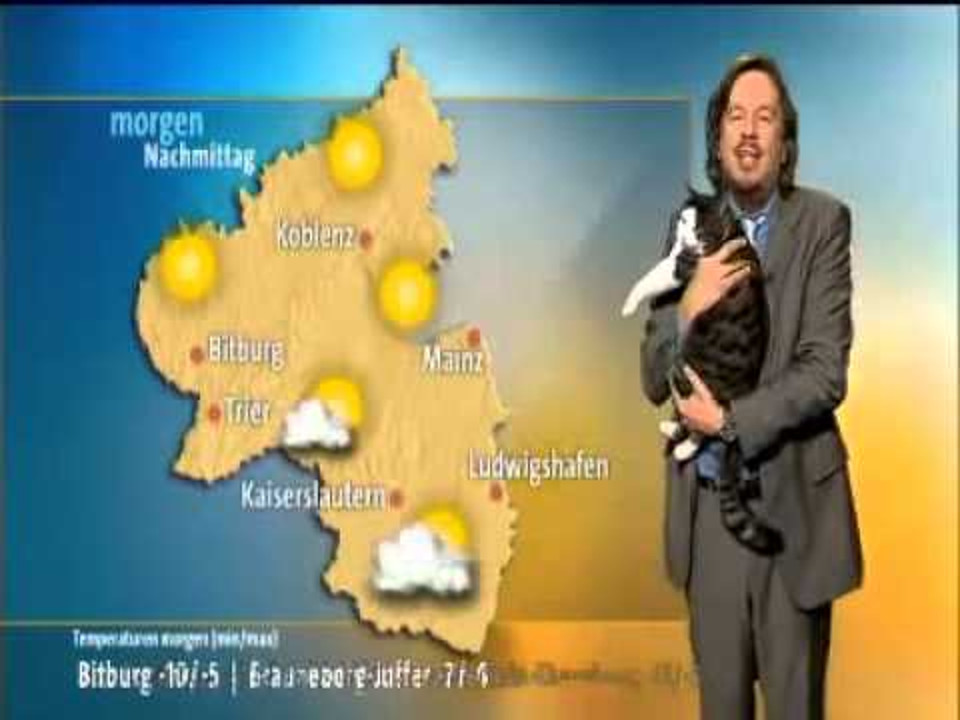 Cat Interrupts Weather Broadcast And Demands Cuddles!