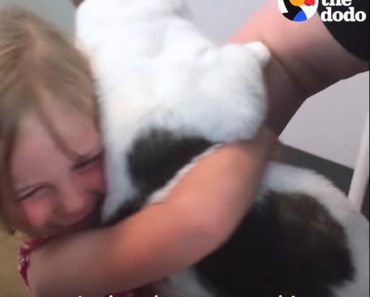 Little Girl Reunites With Her Lost Cat After 3 Years!