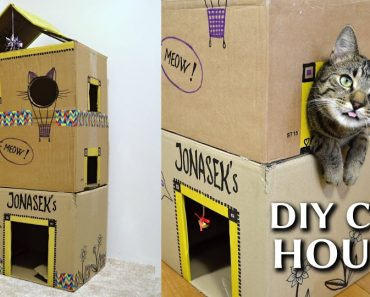 How To Make An EPIC Cardboard Cat House DIY!