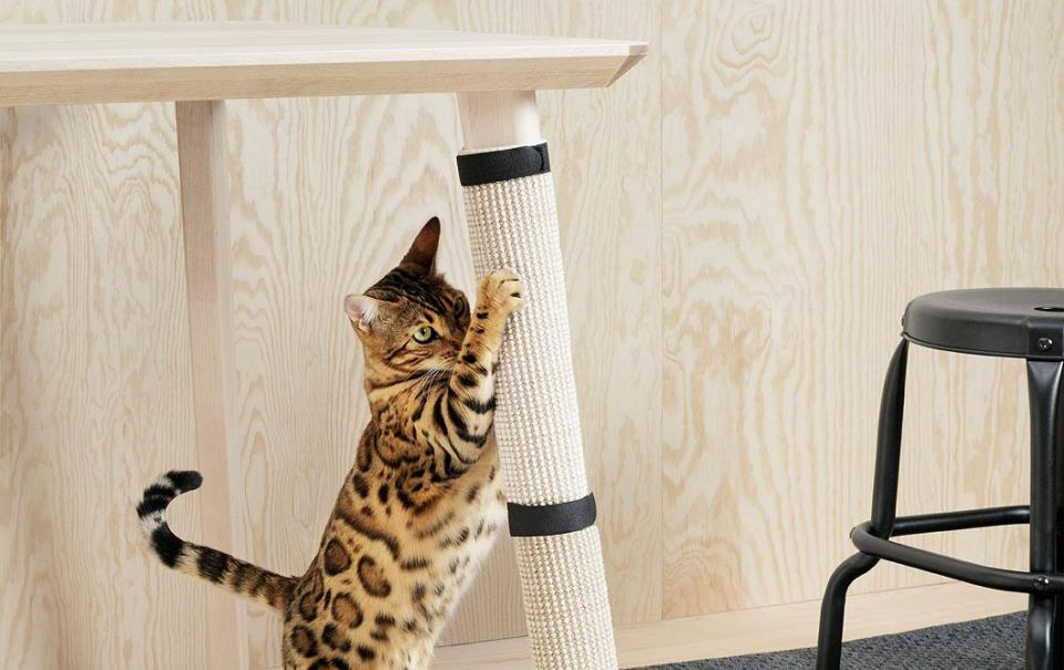 Ikea Finally Launches Furniture for Cats and Dogs!