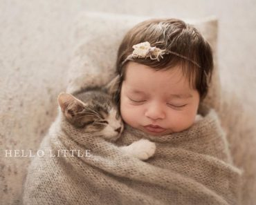 Couple's Baby-and-Kitten Video Takes Internet By Storm!