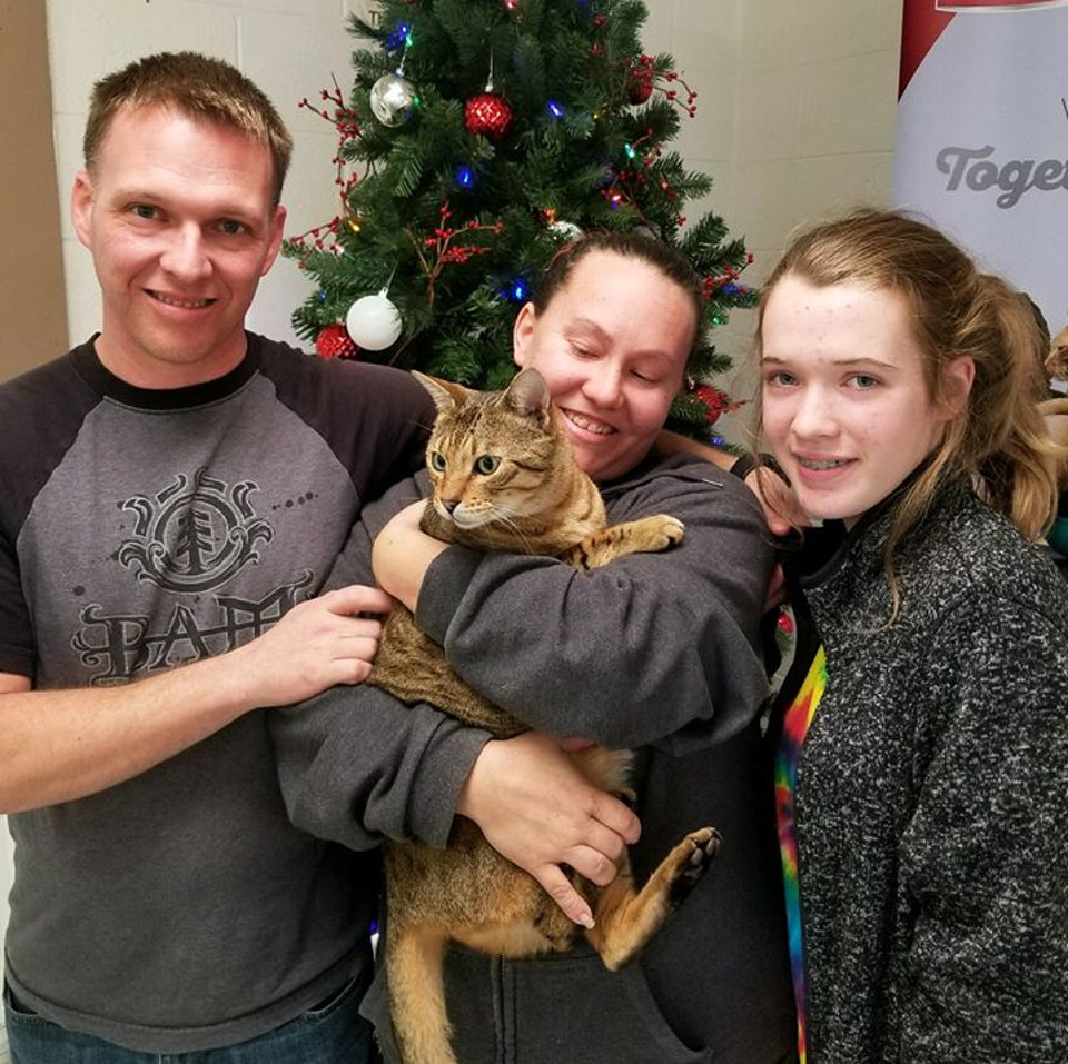 A Christmas Miracle, Lost Cat Returns To Her Family 3 Years Later