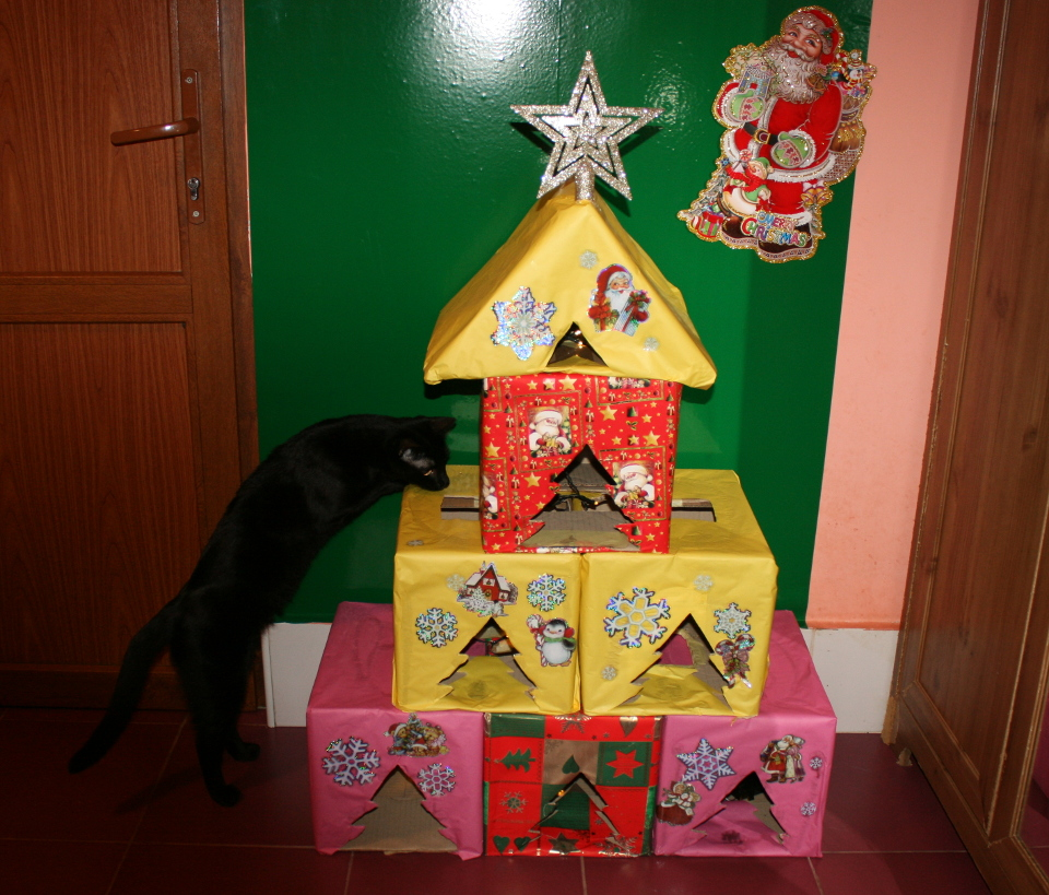 Keep Your Cat Safe And Happy Over The Christmas Period!