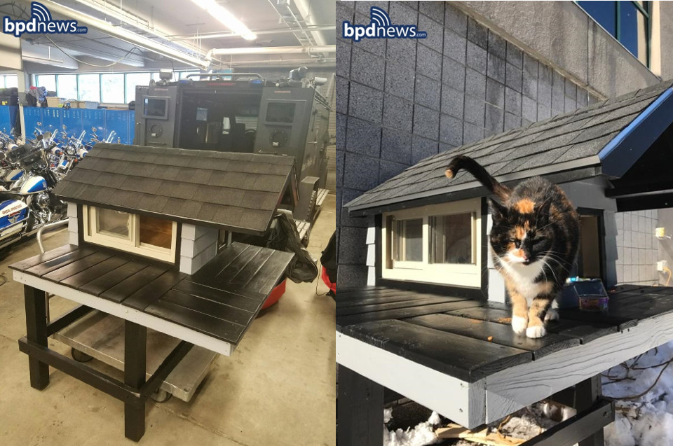 Police Officers Build Mini Condo For Mascot 'SWAT Cat'