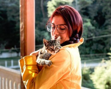 Cat Owners Are More Intelligent Than Dog Owners