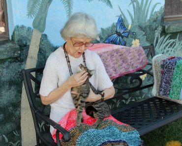 90-Year-Old Woman Knits Small Blankets For Cats At Animal Shelters